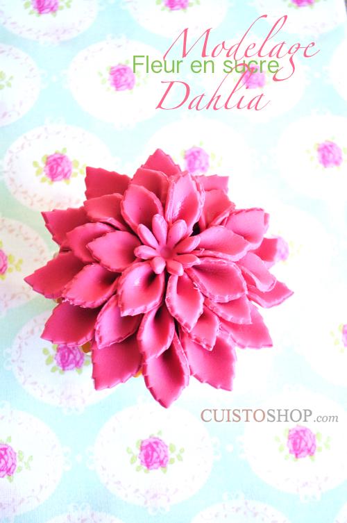 Bien connu Comment réaliser une fleur Dahlia en pâte JU92